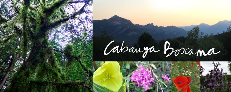 entorn_Cabanya-Boscana_presentacio