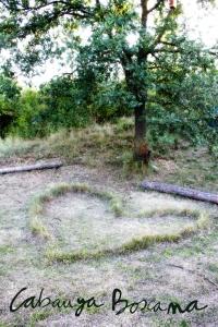 jardi-medicinal_Cabanya-Boscana
